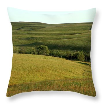 Hills Of Kansas Throw Pillow