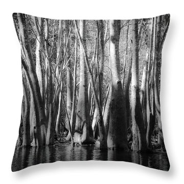 Hillsborough Zen Throw Pillow
