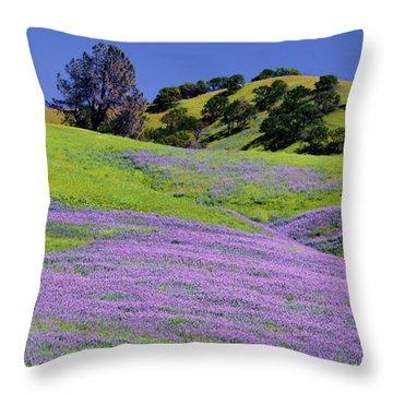 Hillside Carpet Throw Pillow