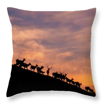 Throw Pillow featuring the photograph Hillside Elk by Darren White