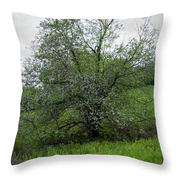Throw Pillow featuring the photograph Hillside Lady by Michael Friedman