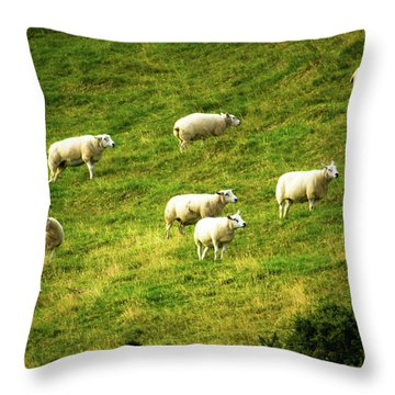 Hillside Pasture Throw Pillow
