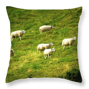 Hillside Pasture Throw Pillow