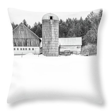 Throw Pillow featuring the photograph Hillside Road Barn And Silo by Edward Fielding