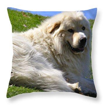 Hillside Watch Throw Pillow by Thomas R Fletcher