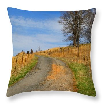 Hilltop Driveway Throw Pillow by Kathryn Meyer