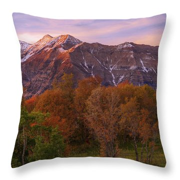 Hint Of Fall Throw Pillow