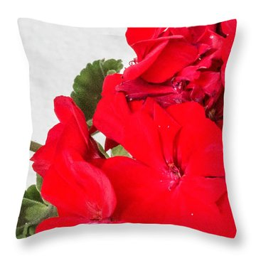 Hint Of Red Throw Pillow by Nance Larson