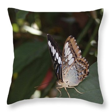 Hints Of Blue Throw Pillow