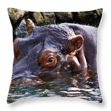 Hippo 3779_2 Throw Pillow