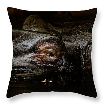 Throw Pillow featuring the photograph Hippo by Joerg Lingnau