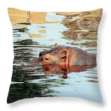 Hippo Scope Throw Pillow by Jan Amiss Photography