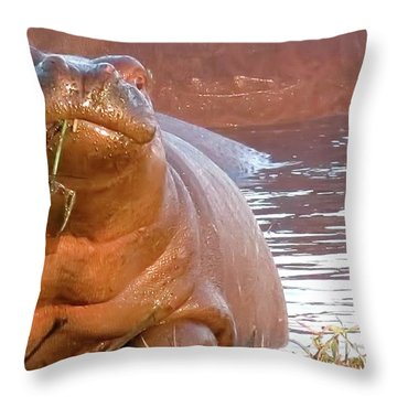 Hippo Snacks Throw Pillow