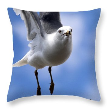 His Feathers Throw Pillow