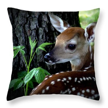 His Handywork Throw Pillow by Bill Stephens
