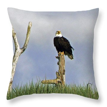 His Majesty Throw Pillow by Pamela Patch