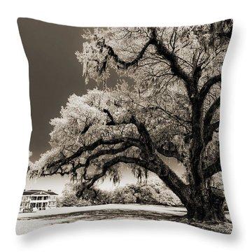 Historic Drayton Hall In Charleston South Carolina Live Oak Tree Throw Pillow