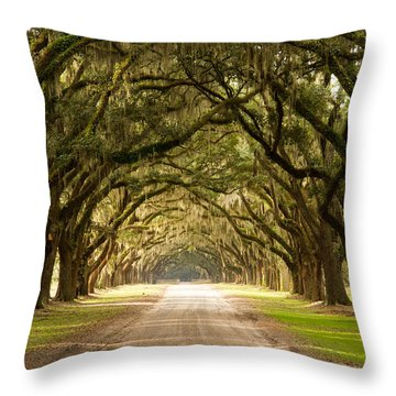 Historic Live Oak Trees Throw Pillow by Lamarre Labadie