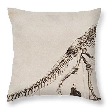 Historical Illustration Of Dinosaur Throw Pillow
