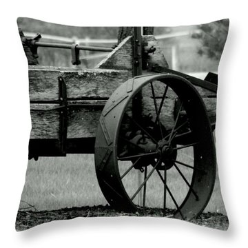 History In The Round Throw Pillow