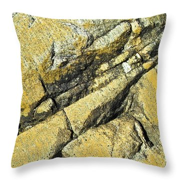 History Of Earth 2 Throw Pillow by Heiko Koehrer-Wagner