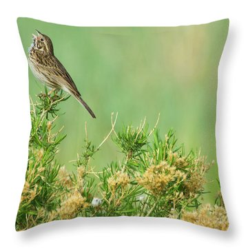 Throw Pillow featuring the photograph Hitting The High Note by John De Bord