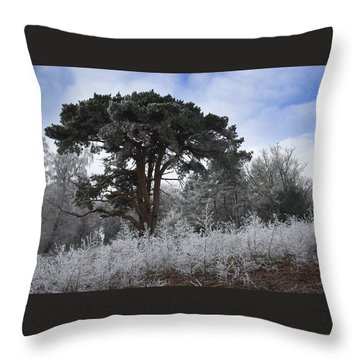 Hoar Frost Throw Pillow by Hazy Apple