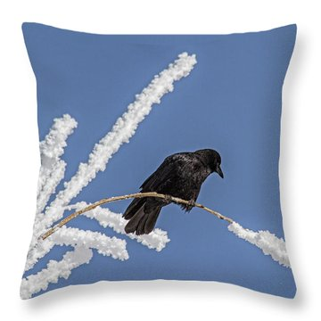 Hoarfrost And The Crow Throw Pillow by Alana Thrower