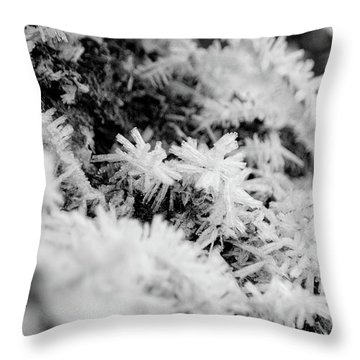 Throw Pillow featuring the photograph Hoarfrost by Erin Kohlenberg