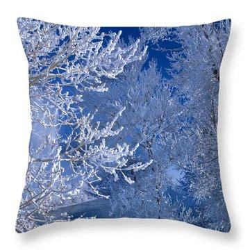 Hoarfrost Throw Pillow by Leland D Howard