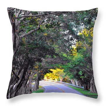 Hobe Sound, Fla Throw Pillow by John Wartman