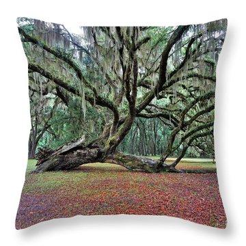 Hofwyl-broadfield Plantation2 Throw Pillow