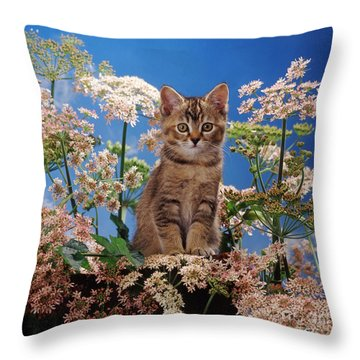 Hogging All The Hogweed Throw Pillow