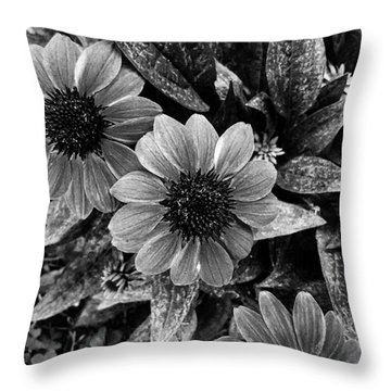 Hold On A Little Longer Throw Pillow
