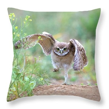 Hold On, I'm Comin' Throw Pillow