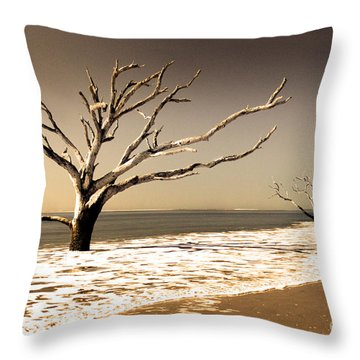 Throw Pillow featuring the photograph Hold The Line by Dana DiPasquale