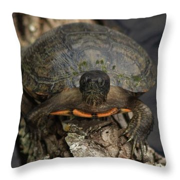 Holding On Throw Pillow by Kim Henderson