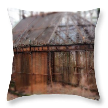 Holding Secrets Throw Pillow