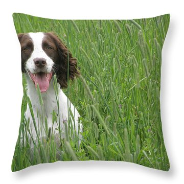 Throw Pillow featuring the photograph Holding Steady  by Angie Rea