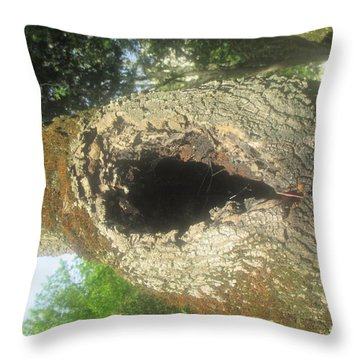 Hole In A Tree Throw Pillow