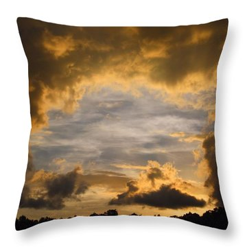 Hole In One Throw Pillow by Kathryn Meyer