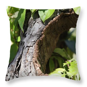 Hole Throw Pillow