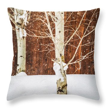 Holiday Aspens Throw Pillow