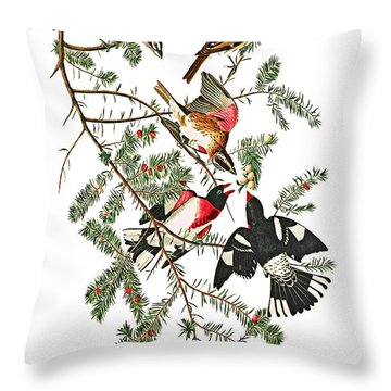 Throw Pillow featuring the photograph Holiday Birds by Munir Alawi