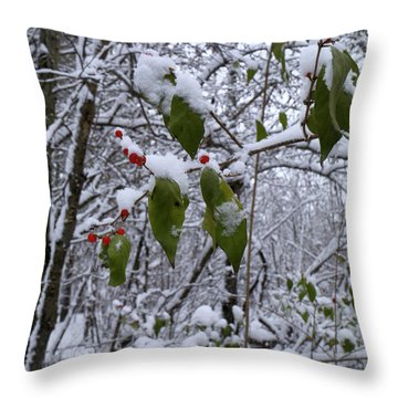 Holiday Colors Throw Pillow by Scott Kingery