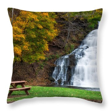 Throw Pillow featuring the photograph Holley Canal Falls by Mark Papke
