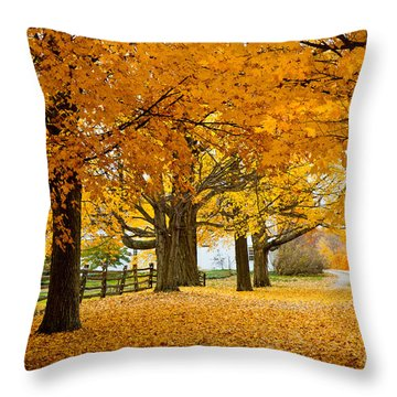 Hollis Farm Throw Pillow by Susan Cole Kelly