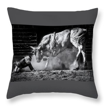 Holy Cow Throw Pillow