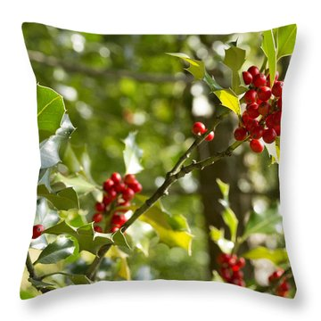 Throw Pillow featuring the photograph Holly With Berries by Chevy Fleet
