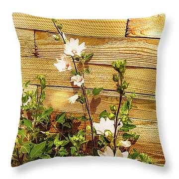 Hollyhock Alcea Rosea Roseneibisch Throw Pillow